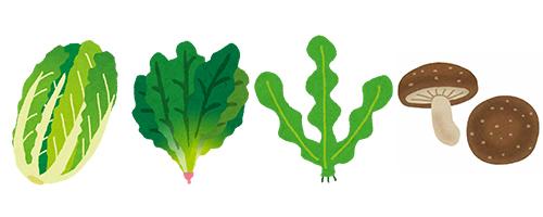 野菜500