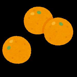 fruit_kinkan