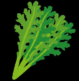 vegetable_mizuna